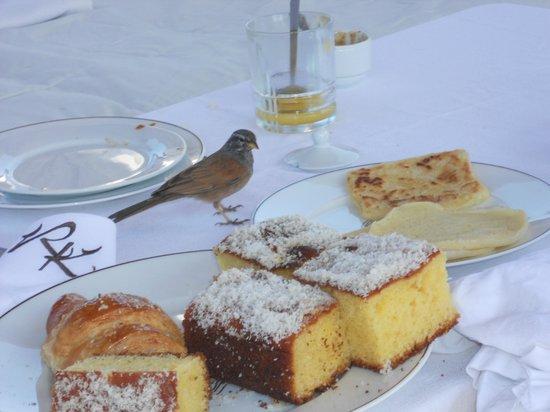 Riad Kheirredine : colazione da favola!