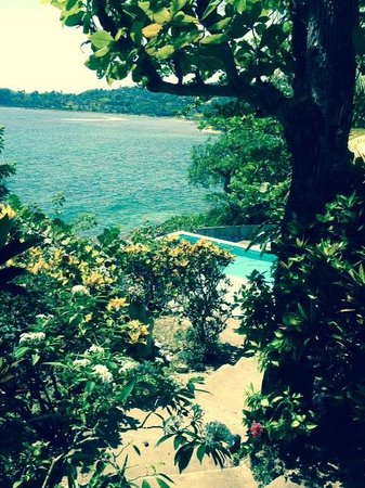 Noel Coward's Blue Harbour : Pool at morning