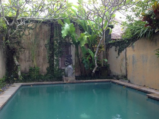 Barong Resort and Spa : Private Pool