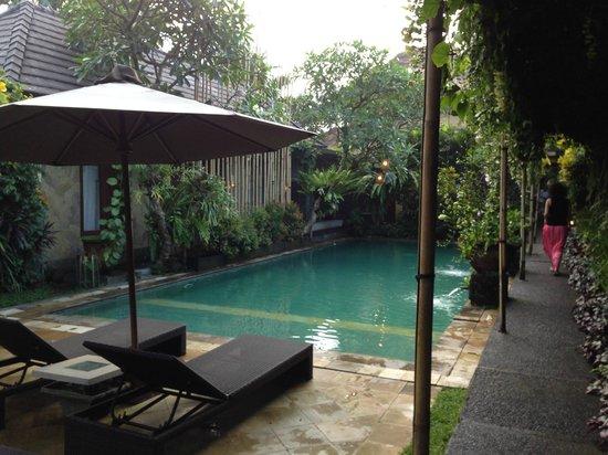 Barong Resort and Spa: The Common Pool
