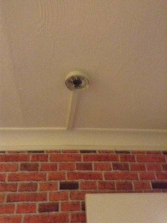 Heathrow Lodge : Not the Smoke Alarm