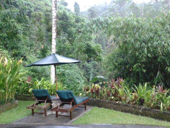 The Royal Pita Maha: Our villa garden and view