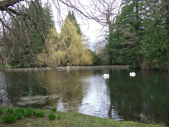 Thorp Perrow Arboretum: Lakeside Vista