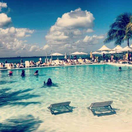 The Standard, Miami : Pool