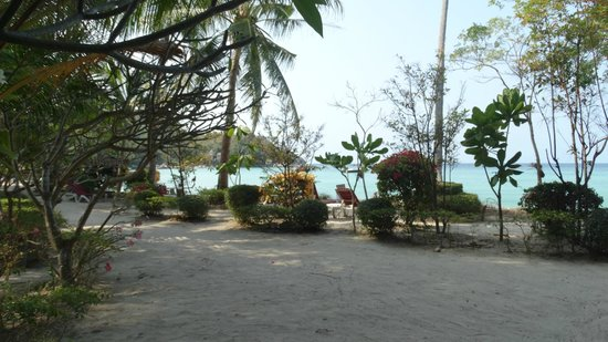 Ko Tao Resort: Lovely grounds in the lower section next to the beach
