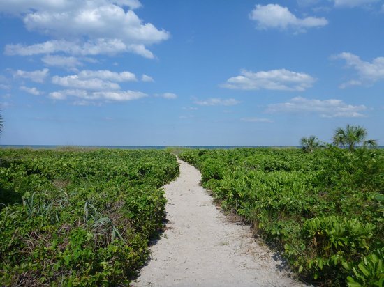 Walking distance beach