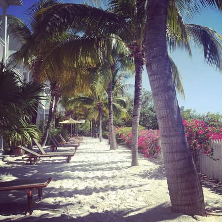 Parrot Key Hotel and Resort: Sandy Terrace
