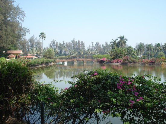 Silvassa, Hindistan: Small lake inside the garden