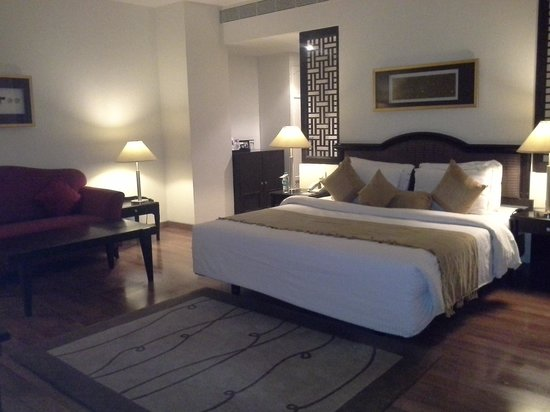 Hotel Minerva Grand: Imperial room