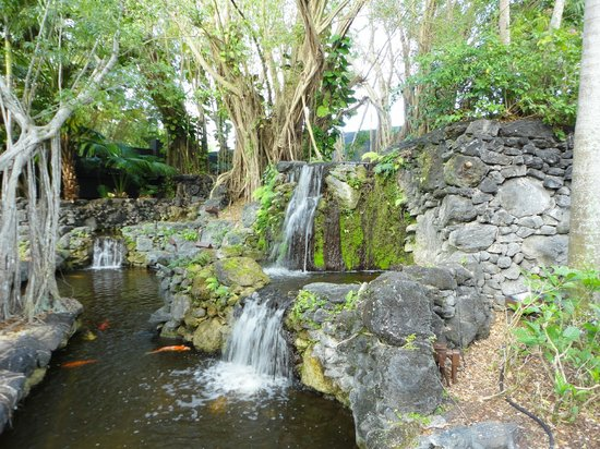 Bonaventure Resort & Spa: waterfall