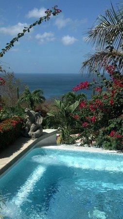 Orquidea del Sur: Upper pool