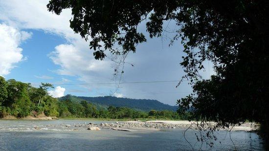 Sacha Runa Jungle Lodge : Magical island