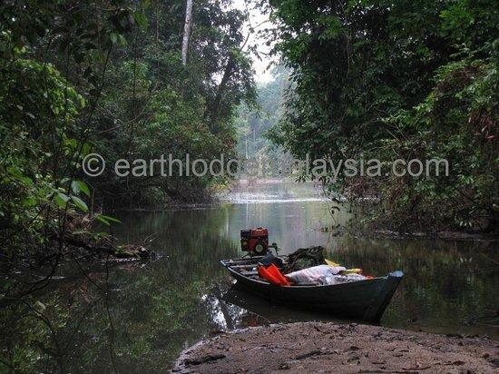 Earth Lodge Ulu Muda: The long-tailed sampan parked at Sungai Jawa