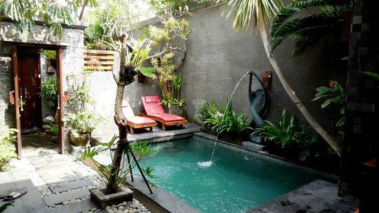 The Bali Dream Villa Seminyak : The Private Pool