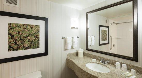 Hilton Garden Inn Dallas Duncanville 3