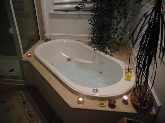 Frog Hollow Farm Bed & Breakfast: Another view of the tub