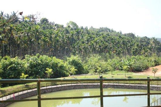 Blooms Green Farm: view from prabha villa