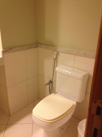 Radisson Aracaju: Bathroom 2