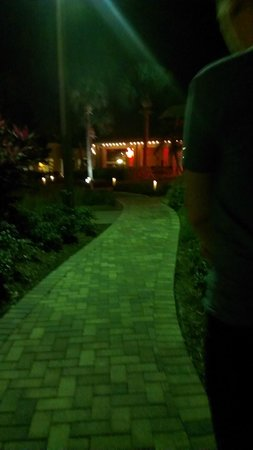 Doubletree by Hilton Orlando at SeaWorld: garden area at night