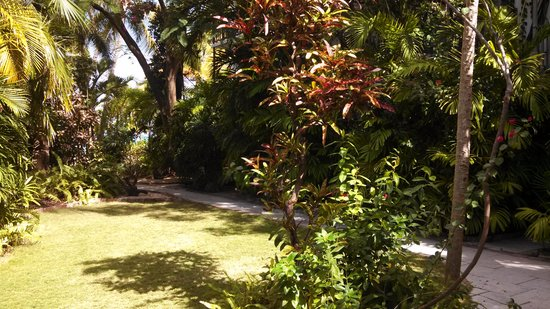Siboney Beach Club: Beautiful Garden