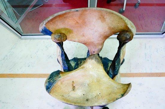 Don Bosco Centre for Indigenous Cultures: Elephant Facial Bones