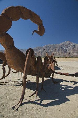 Galleta Meadows : Huge scorpion