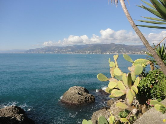 Camogli - San Rocco - Batterie - San Fruttuoso Trail : Punta Pidocchio