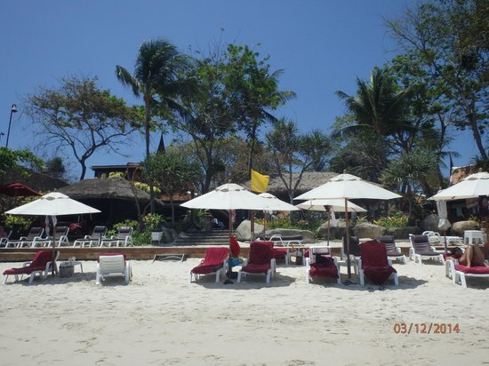 Poppies Samui : view from the beach