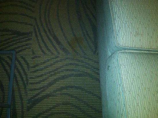 SpringHill Suites Shreveport-Bossier City/Louisiana Downs: stains2