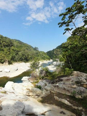 Jungle River Lodge Tours: view from the lodge
