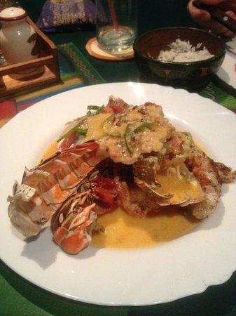 Havana Cuban Restaurant: Lobster with Garlic Sauce