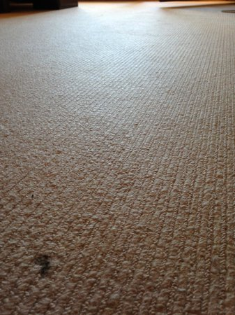 A-ROSA Resort Kitzbühel: Carpets showing their age with stains.