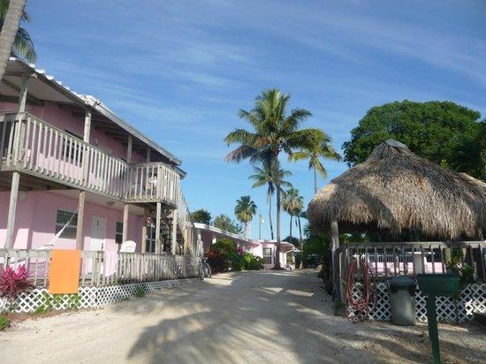 Sands of Islamorada: Le motel à gauche, l'espace piscine à droite