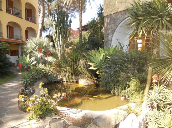 Hotel Terme San Lorenzo : il giardino