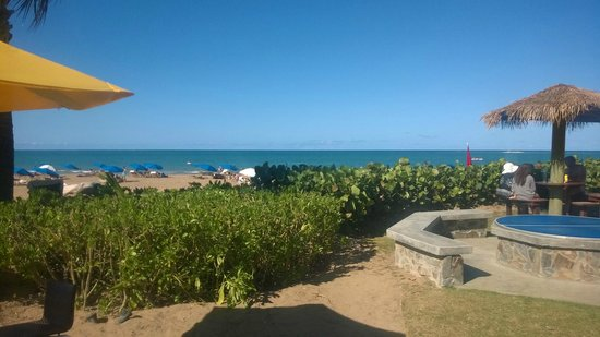 Margaritaville Vacation Club Wyndham Rio Mar: near tiki hut view