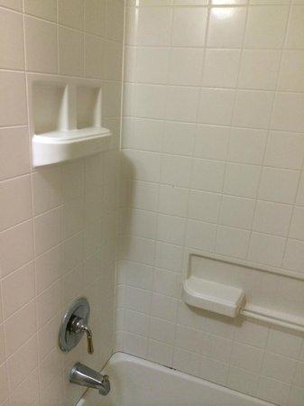 Budget Inn: Shower