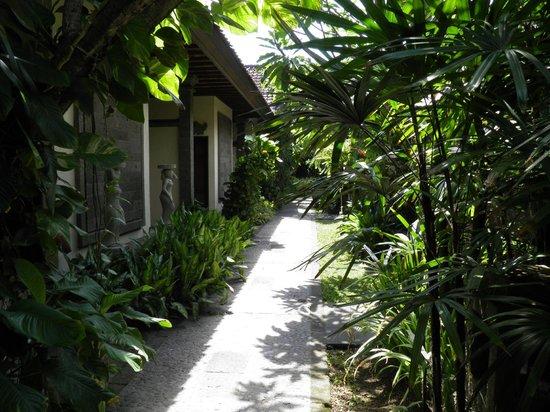 Hotel Puri Bambu : chemin menant aux chambres