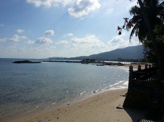 Blu' Beach Bungalows: Veiw of the beach