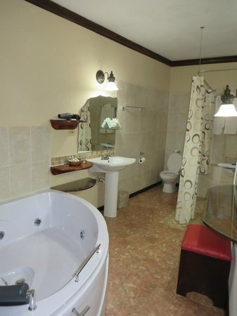 Franklyn D Resort & Spa : Our bathroom