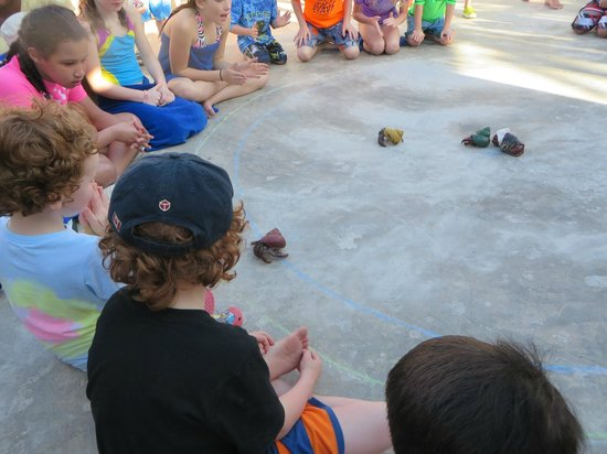 Franklyn D Resort & Spa: Crab races one night!  Prizes to be won!!