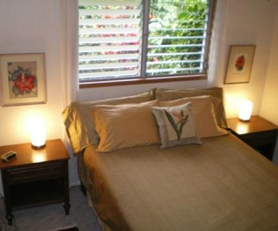 Gay Hawaii Bed and Breakfast: Tropical Room Gay Hawaii B&B Kalapana Pahoa
