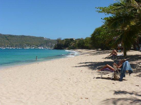Sugarapple Inn : Beach at Lower Bay