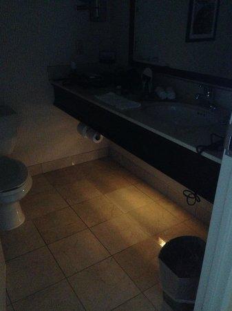 Hilton Milwaukee City Center: Bathroom night light