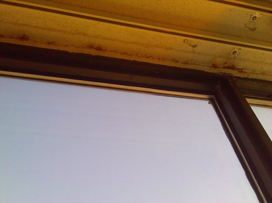 DoubleTree by Hilton Hotel St. Louis - Westport : mold and rust on celiling