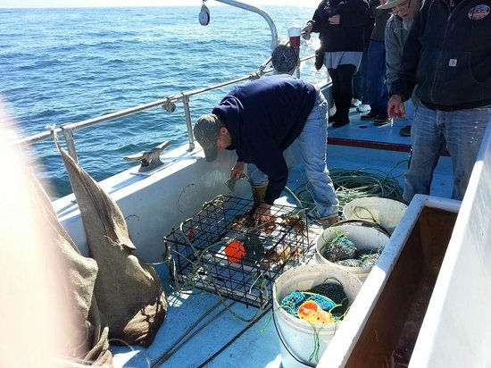 Randy's Fishing Trips and Whale Watching Trips: Deckhand removing crabs from crab pot