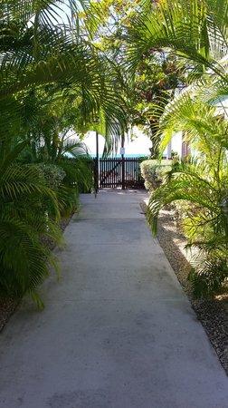 Buccaneer Beach Club : Gate to beach