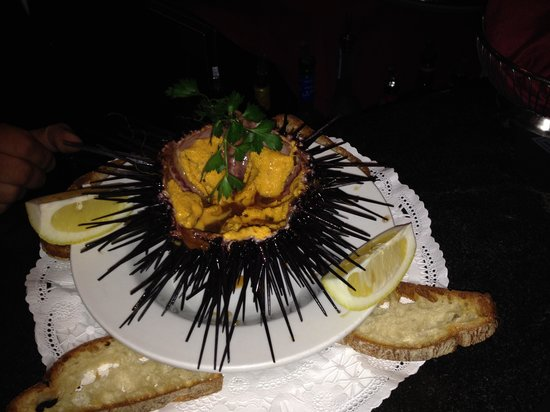 Baci Ristorante Italiano: Sea Urchin - caught fresh!