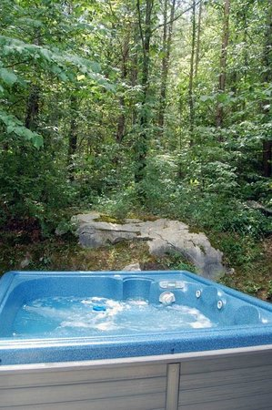 Pioneer Cabins & Guest Farm: All cabins have nice outdoor hot tubs