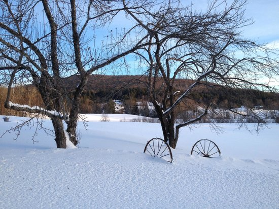 Apple Knoll Inn : Another awesome Winter day!
