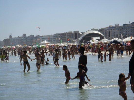Forte Beach: Praia do Forte 4